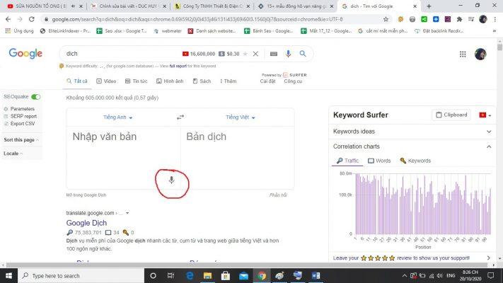 google-dich